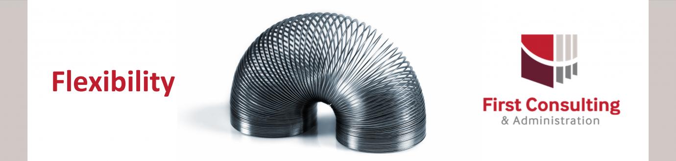 3-Flexibility Slinky