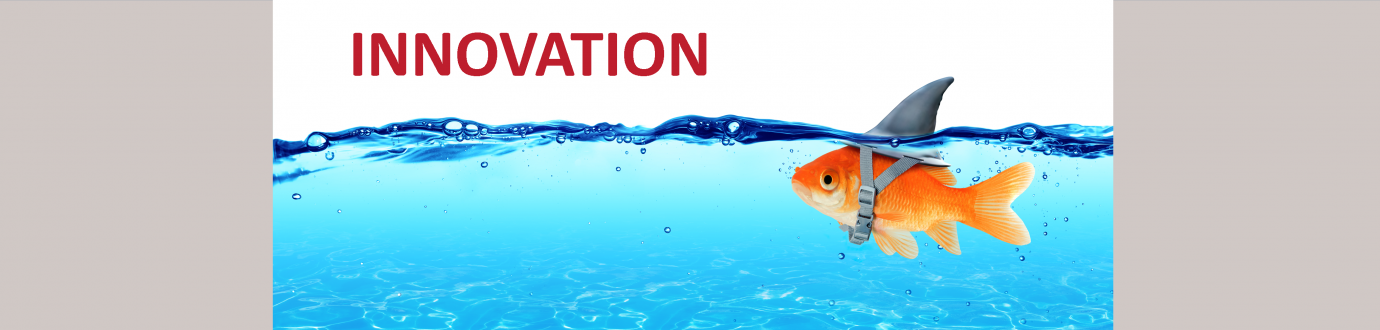 4-Innovation Goldfish